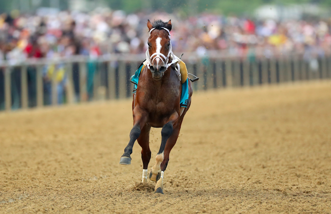 Preakness stakes entry Bodexpress unseats his jockey in the starting stall and comes home free.