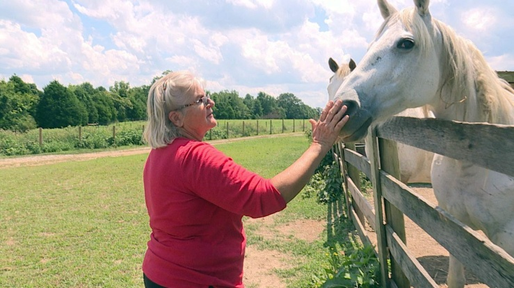 Karen Thurman cares for 48 rescued horses at her nonprofit farm, Rainhill Equine Facility. (Photo: Madison Martin)