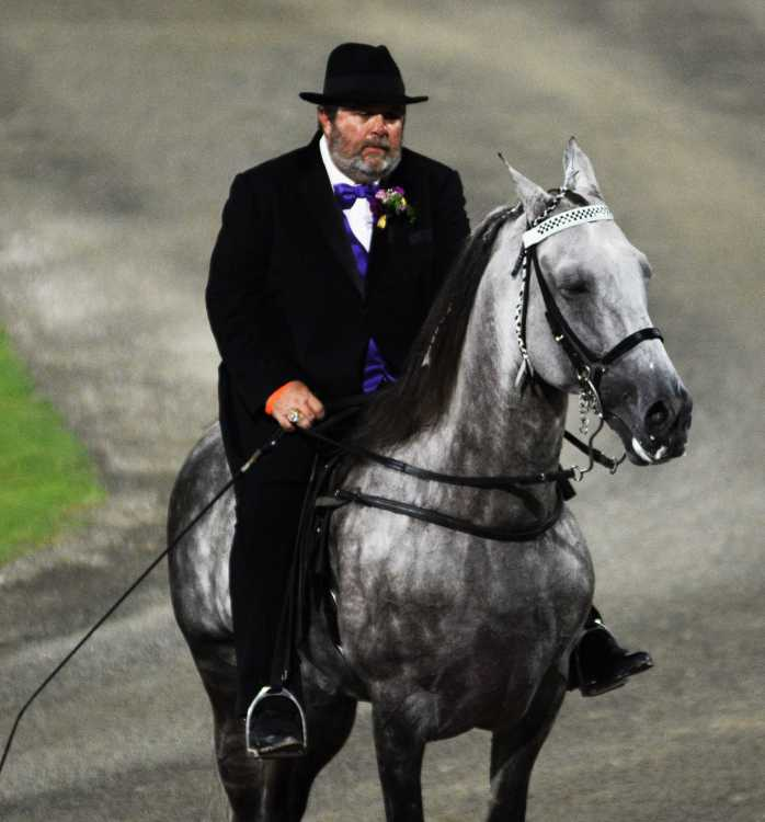 Rodney Dick and Tennessee Walking Horse World Grand Champion I'm Mayhem. Photo by Gary Johnson (Times-Gazette).