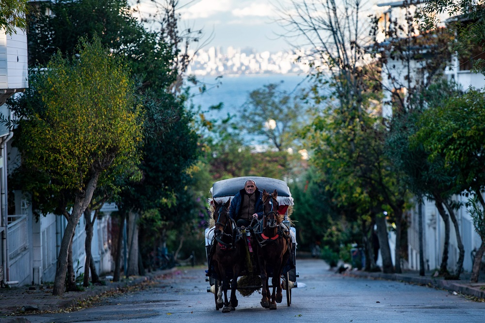 A horse drawn carriage passes by in a street on the island of Buyukada off Istanbul on November 29, 2019. - It's one of the classic excursions in Istanbul: a boat journey to one of the car-free Princes' Islands followed by a ride in a horse-drawn carriage. But the carriage rides have become increasingly controversial in recent years as activists sound the alarm over the welfare of the horses. Some 400 a year are dying on the islands, a parliament committee reported in October, and activists say the real number is twice as high. (Photo by Yasin AKGUL / AFP)