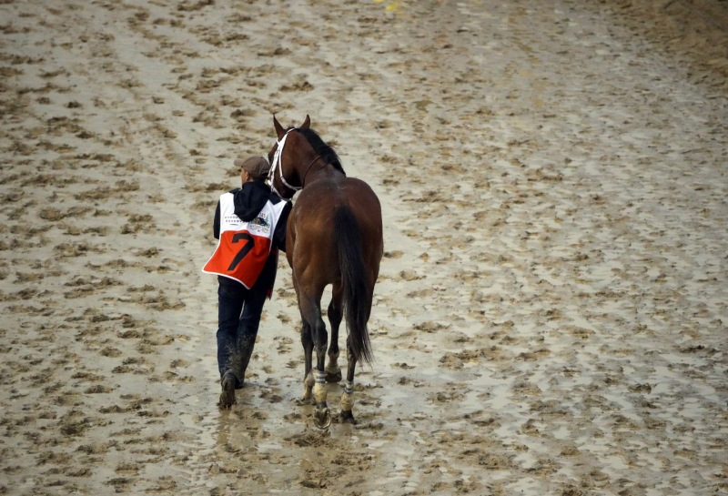 Maximum Security is walked off the track after being disqualified Saturday at the 145th running of the Kentucky Derby. (Charlie Riedel/AP)