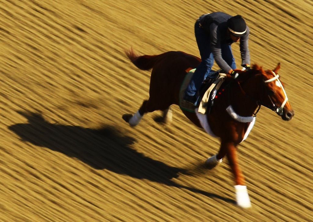 I'll Have Another was made a strong favorite to win the Belmont Stakes on Saturday.Credit...Al Bello/Getty Images