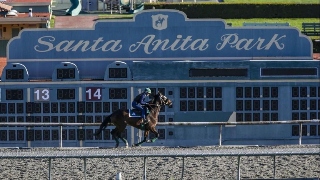A rider on the training track at Santa Anita Race Track in Arcadia, Calif. on March 8. (Irfan Khan / Los Angeles Times)