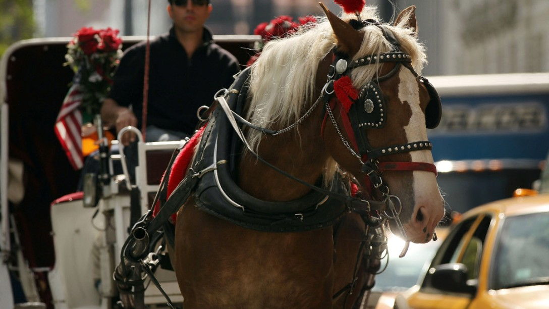 Horse drawn carriage, Chicago. Image: NBC.