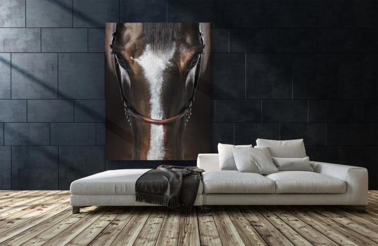 Raphael Macek horse portrait Immersion used in interior design.