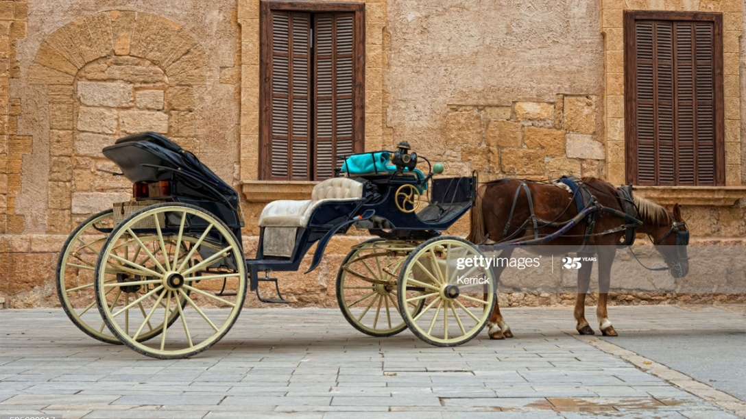 Majorca carriage horse, Spain. Getty Images.